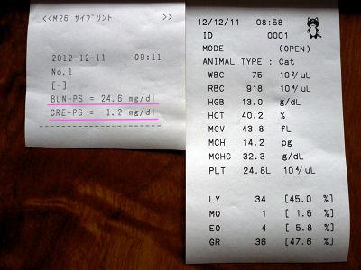 20121211血液検査結果