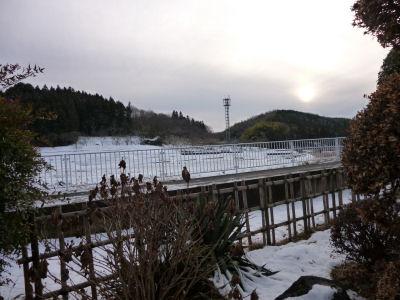 20130115北関東しま地方の雪