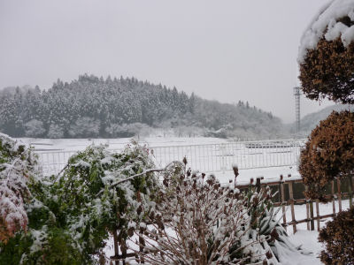 20130114北関東しま地方の雪