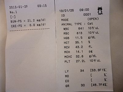 20130125血液検査結果