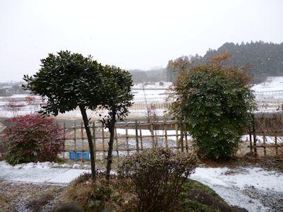 今冬は雪が多い?