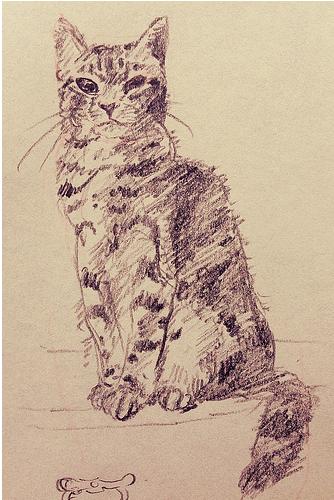 keiさんに描いていただいたしま