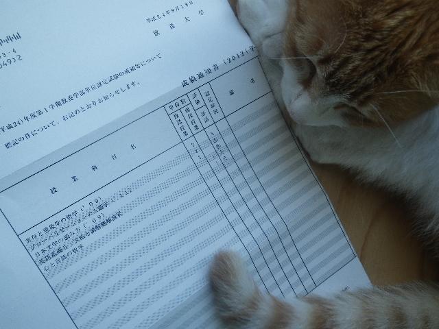 2012年1学期 認定試験結果