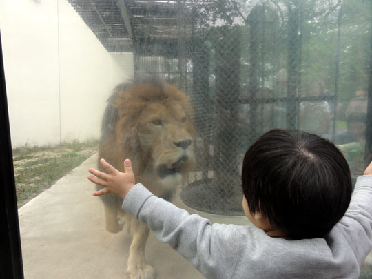 2011.10.16安佐動物園 1.5