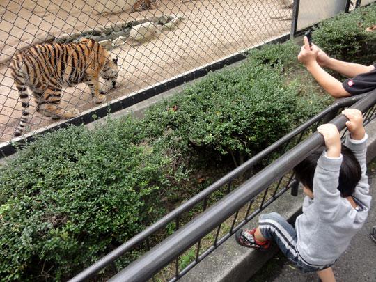 2011.10.16安佐動物園 3