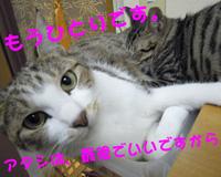 img_1043009_32619818_9.jpeg