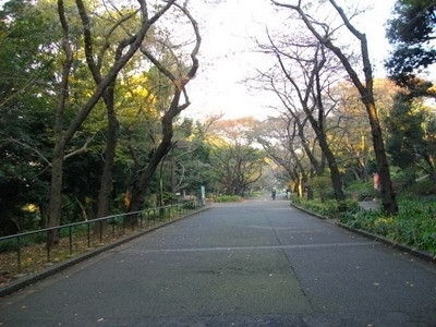 tokyo201111_10.jpg