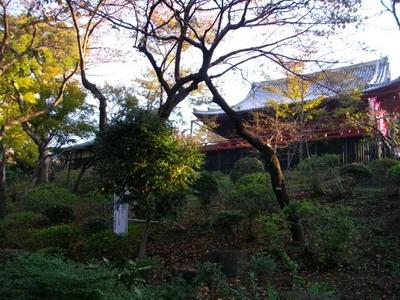 tokyo201111_11.jpg
