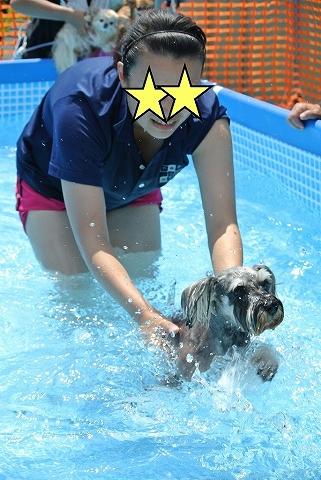 2014.8.5メルシィ泳ぐ-s-s