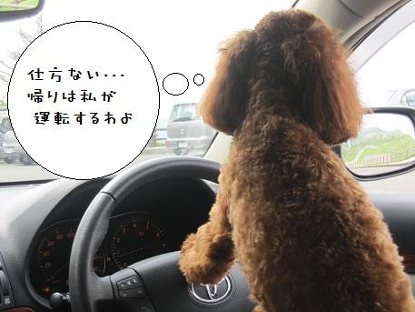 姫鶴荘へおでかけ 6 ドライブ