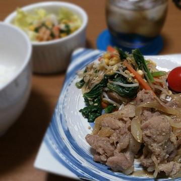 13日 しょうがやき 小松菜ともやしの炒め物 えびちりもどき
