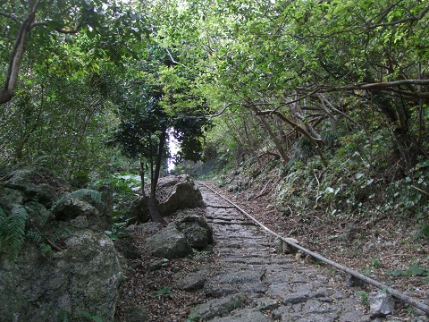 9 樋川へ続く道