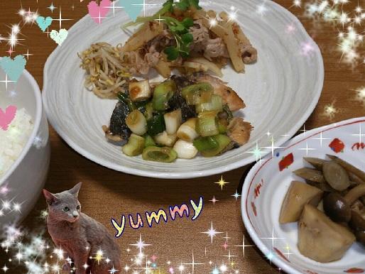 27日 ブリのねぎ塩焼き 大根と豚肉の炒め物 里芋とごぼうの煮物