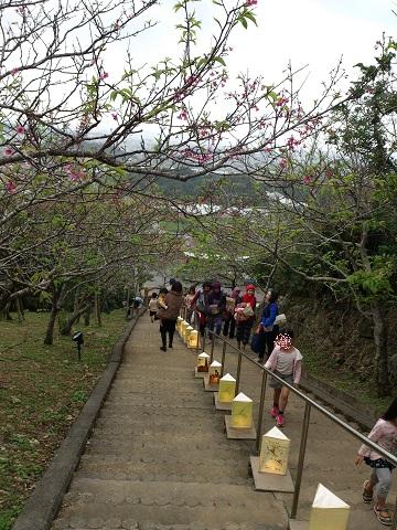 葉桜まつり
