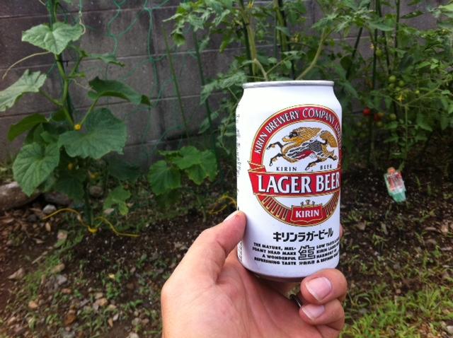 ビール対策
