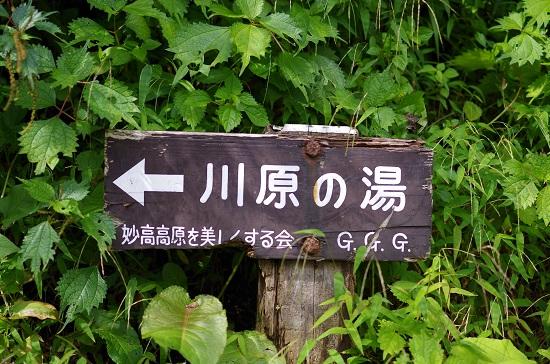 IMGP48210.jpg