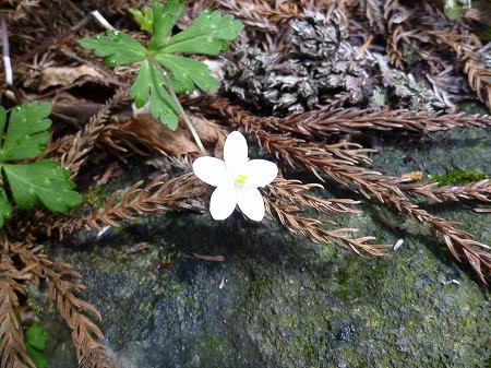 2012.5.1.tukuba 001
