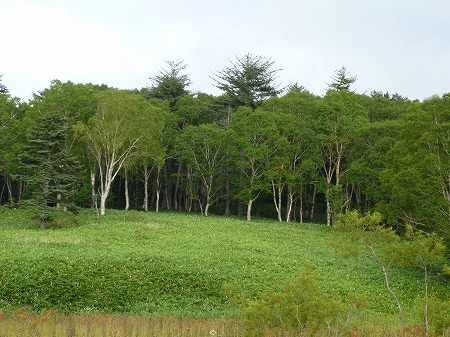 2012.9.12.hiuchi 097