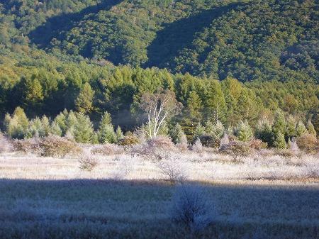 2012.10.8.hatushimohatugoori 010