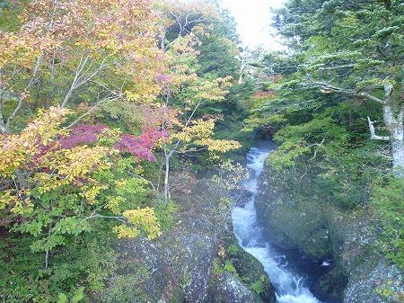 2012.10.8.hatushimohatugoori 004
