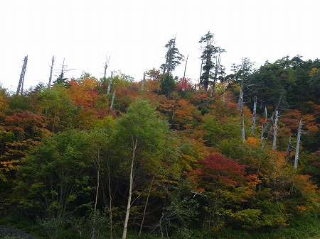 2012.10.8.hatushimohatugoori 132