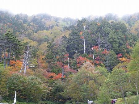 2012.10.8.hatushimohatugoori 131