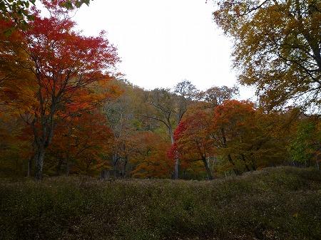 2012.10.26.nikko 117