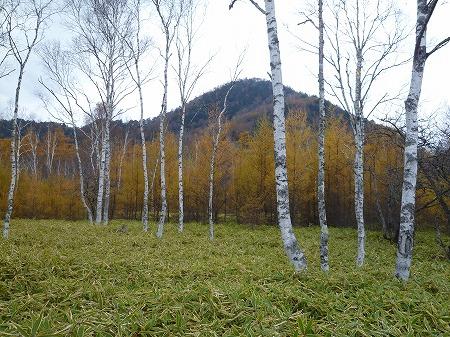 2012.10.26.nikko 133