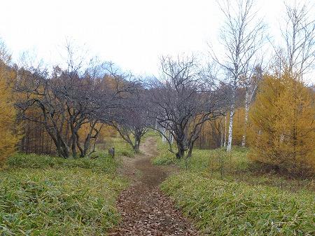 2012.10.26.nikko 129