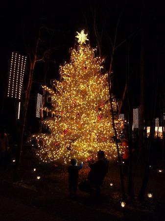 2012.12.25.karuizawa 006