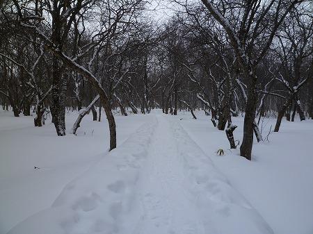 2013.1.18.koutoku 014
