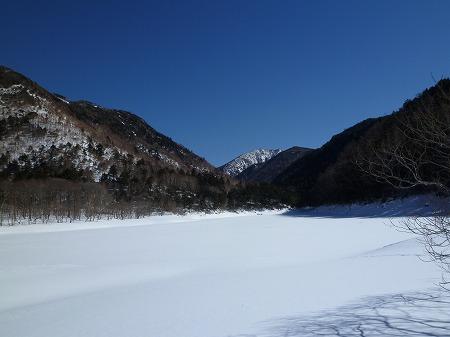 2013.2.9.karikomi 062