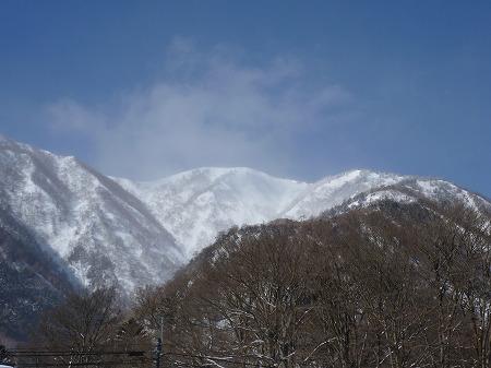 2013.2.9.karikomi 006