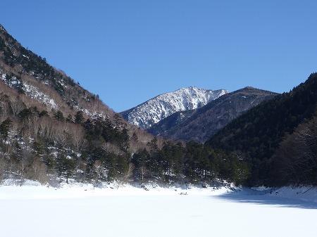 2013.2.9.karikomi 057