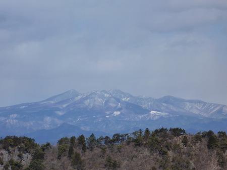 2013.2.25.kogashiyama 014