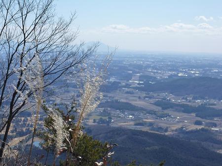2013.2.25.kogashiyama 008