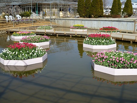 2013.3.9.ashikaga 010