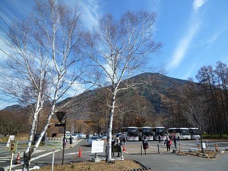 sainoko2011001.jpg