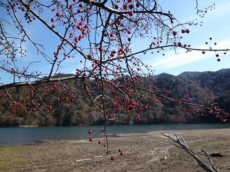 sainoko2011011.jpg