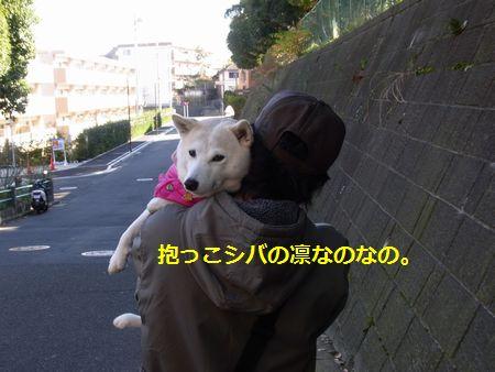 RIMG2096小