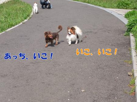 RIMG1057_convert_20100422142711.jpg