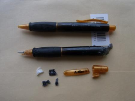RIMG1168_convert_20100801200005.jpg