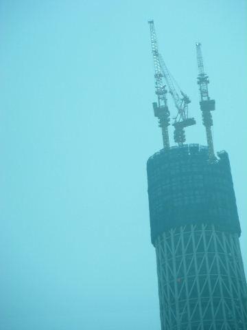 2010_03060004.jpg