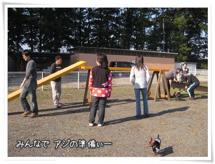 003-20101106.jpg