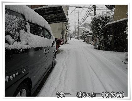 019-20110119.jpg