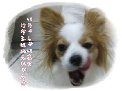 20100210_001.jpg