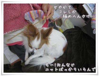 20100213_003.jpg