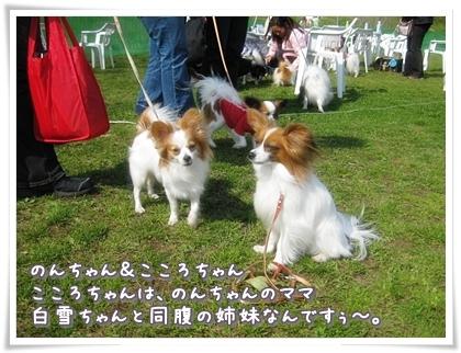 20100323-006.jpg