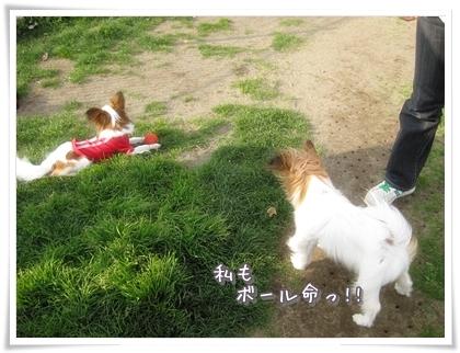 20100323-028.jpg
