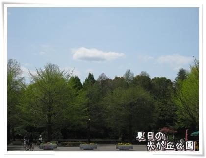 20100422-007.jpg
